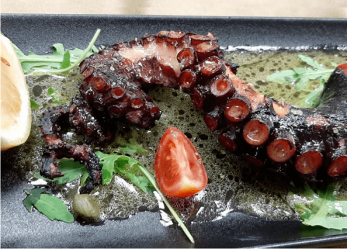 Homemade marinated grilled octopus
