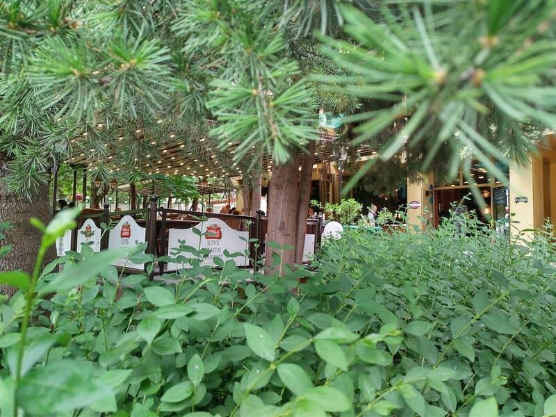 ресторанти с градина стара загора царя 65