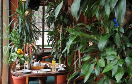 ресторанти стара загора царя 65